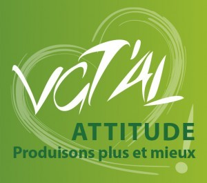 VgtalAttitude-Logo-300x265